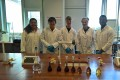 Aspirin Synthesis Workshop - Colourimetry Solutions